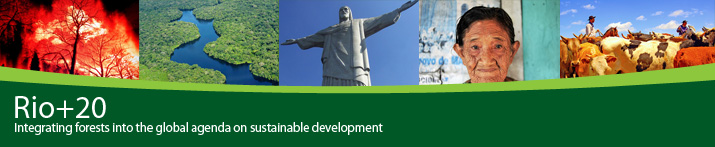 Integrating forests into the global agenda on sustainable development