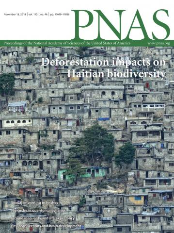 Policies for reduced deforestation and their impact on agricultural production