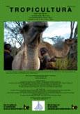 Analyse de la chaîne de légalité des filières de sciage artisanal et du bois énergie à Kisangani (R.D.C)
