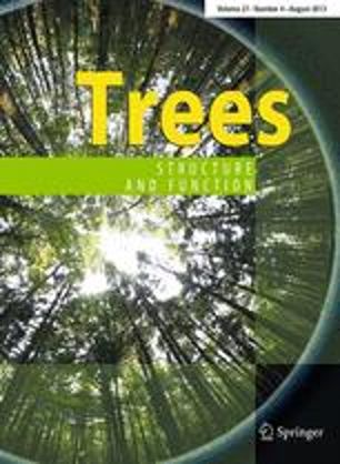 Quantifying branch architecture of tropical trees using terrestrial LiDAR and 3D modelling
