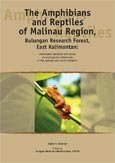The amphibians and reptiles of Malinau Region, Bulungan Research Forest, East Kalimantan: annonated checklist with notes on the ecological presence of the species and local utilization