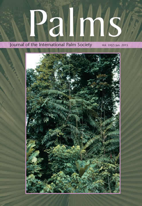 The oil palm (Elaeis guineensis): Research challenges beyond controversies