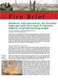 Kebakaran, mata pencaharian, dan kerusakan lingkungan pada lahan basah di Indonesia: lingkaran yang tiada berujung pangkal