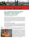 Fire, livelihoods and environmental degradation in the wetlands of Indonesia: a vicious cycle