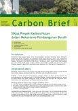 Siklus proyek karbon hutan dalam mekanisme pembangunan bersih