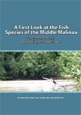 A first look at the fish species of the middle Malinau: taxonomy, ecology, vulnerability and importance