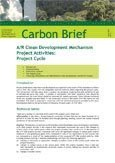 A/R clean development mechanism project activities: project cycle