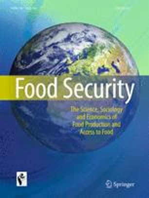 Links between energy access and food security in sub Saharan Africa: an exploratory review