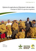 Options for agriculture at Marrakech climate talks: messages for SBSTA 45 agriculture negotiators