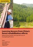Learning lessons from China's forest rehabilitation efforts: national level review and special focus on Guangdong Province