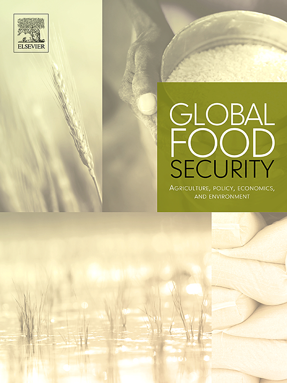 Farm household models to analyse food security in a changing climate: a review