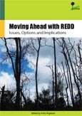 What are the key design issues for REDD and the criteria for assessing options?