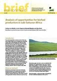 Analysis of opportunities for biofuel production in sub-Saharan Africa