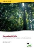 Emerging REDD+: a preliminary survey of demonstration and readiness activities