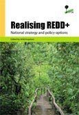 When REDD+ goes national: a review of realities, opportunities and challenges