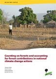 Counting on forests and accounting for forest contributions in national climate change actions