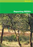Reporting REDD+