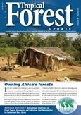 Cameroon needs more than approved forest management plans