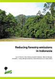 Reducing forestry emissions in Indonesia