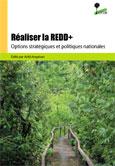 Réaliser la REDD+: options stratégiques et politiques nationales