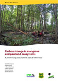 Carbon storage in mangrove and peatland ecosystems: a preliminary account from plots in Indonesia