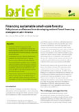 Financing sustainable small-scale forestry: policy issues and lessons from developing national forest financing strategies in Latin America