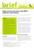 Rights to forests and carbon under REDD+ initiatives in Latin America