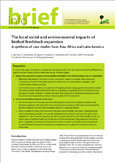 The local social and environmental impacts of biofuel feedstock expansion: a synthesis of case studies from Asia, Africa and Latin America
