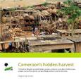 Cameroon's hidden harvest