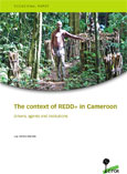 The context of REDD+ in Cameroon: Drivers, agents and institutions