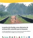 La producción familiar como alternativa de un desarrollo sostenible para la Amazonía: lecciones aprendidas de iniciativas de uso forestal por productores familiares en la Amazonía boliviana, brasilera, ecuatoriana y peruana