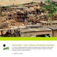 Cameroun: richesse forestière ignorée