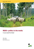 REDD+ politics in the media: A case study from Brazil