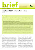 Snapshot of REDD+ in Papua New Guinea