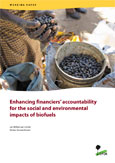 Enhancing financiers' accountability for the social and environmental impacts of biofuels