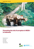 Preventing the risks of corruption in REDD+ in Indonesia