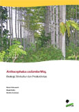 Anthocephalus cadamba Miq.: ekologi, silvikultur dan produktivitas