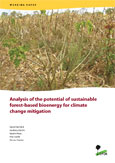 Analysis of the potential of sustainable forest-based bioenergy for climate change mitigation