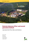 Emission balances of first -and second- generation biofuels: Case studies from Africa, Mexico and Indonesia