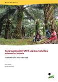 Social sustainability of EU-approved voluntary schemes for biofuels: Implications for rural livelihoods