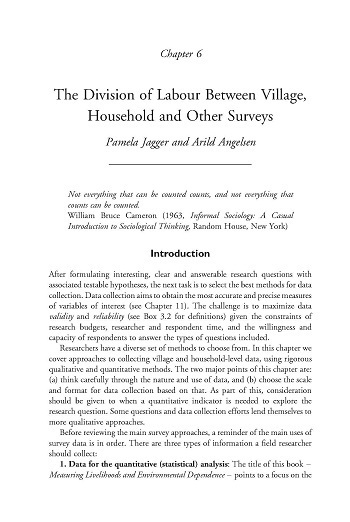 The division of labour between village, household and other survey