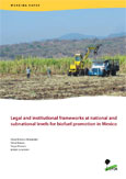 Legal and institutional frameworks at national and subnational levels for biofuel promotion in Mexico