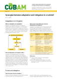 Synergies between adaptation and mitigation in a nutshell