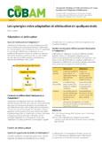 Les synergies entre adaptation et att�nuation en quelques mots