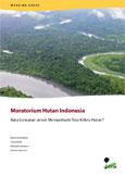 Moratorium hutan Indonesia: Batu loncatan untuk memperbaiki tata kelola hutan?