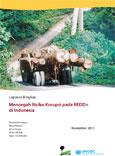 Mencegah risiko korupsi pada REDD+ di Indonesia: Laporan ringkas