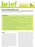 Ðe �n th� diem REDD+ l� g�?: Các loai hình de  án thí diem REDD dua trên các hoat d og thí diem o Indonesia