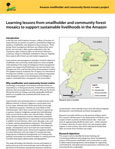 Learning lessons from smallholder and community forest mosaics to support sustainable livelihoods in the Amazon