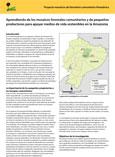 Aprendiendo de los mosaicos forestales comunitarios y de peque�os productores para apoyar medios de vida sostenibles en la Amazonia