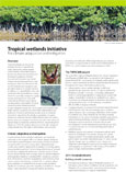 Tropical wetlands initiative: For climate adaptation and mitigation